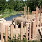 Zoo Copenhaga